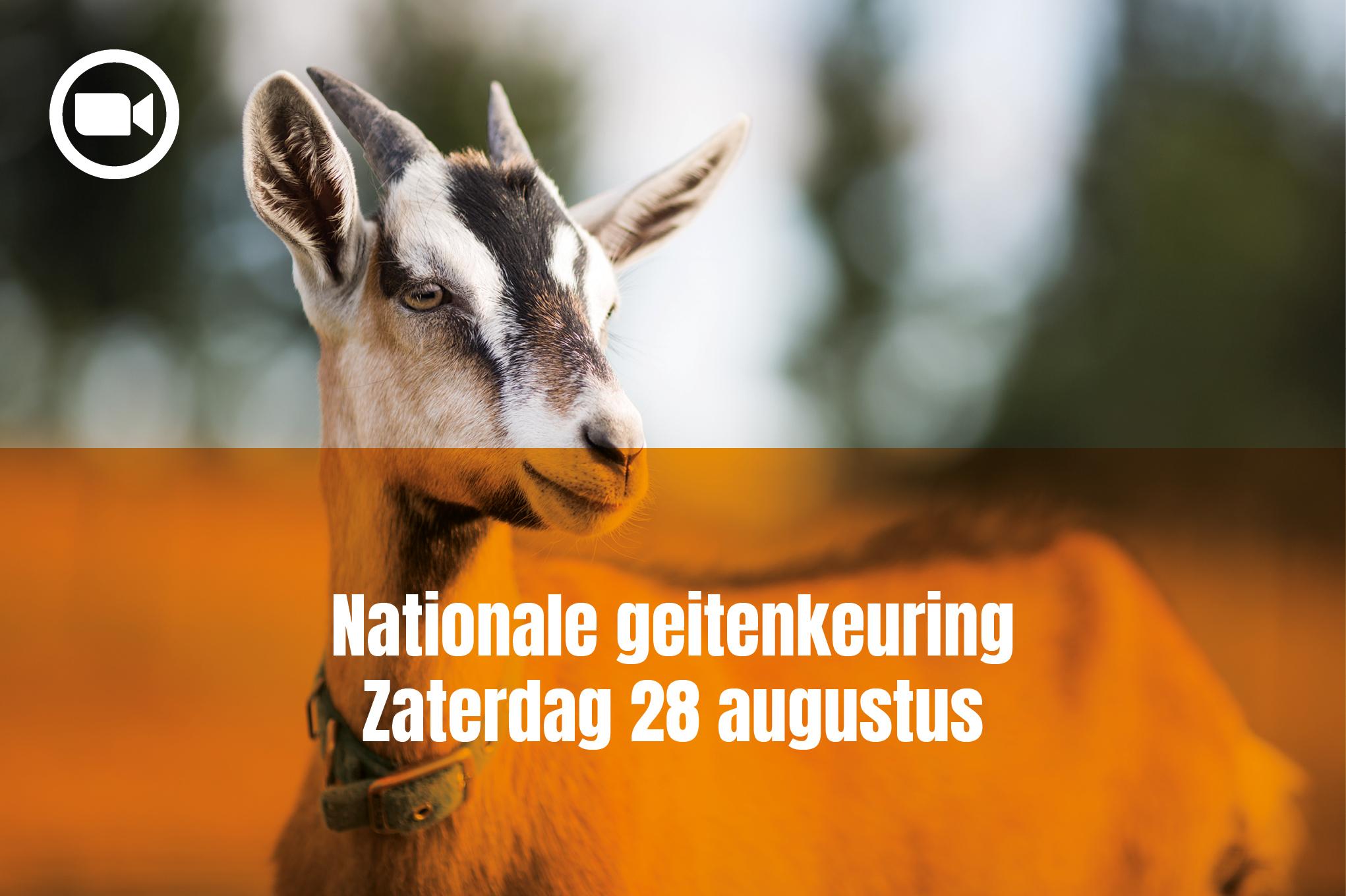 Nationale geiten keuring zaterdag 28 augustus 2021